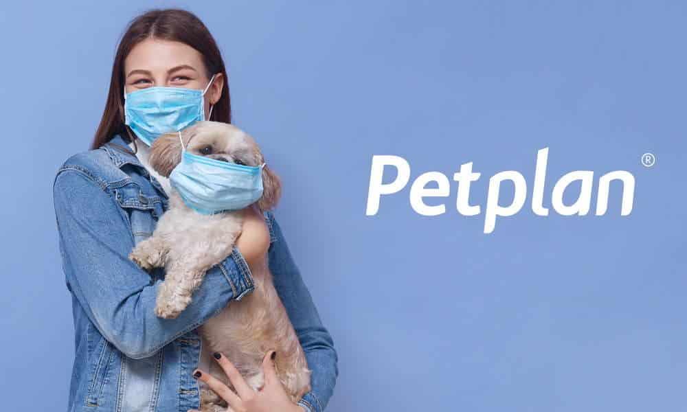 petplan insurance reviews